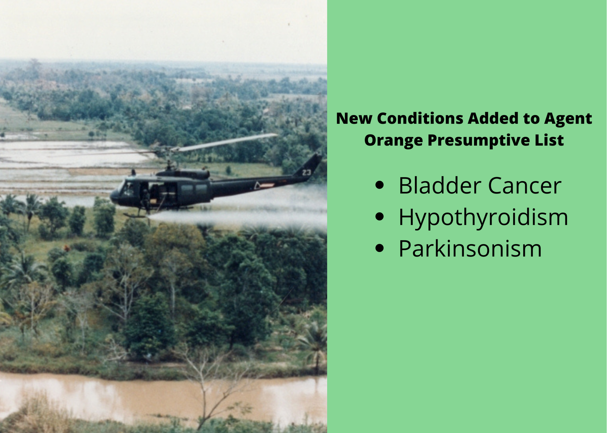 New Conditions Added to Agent Orange Presumptive List 2021
